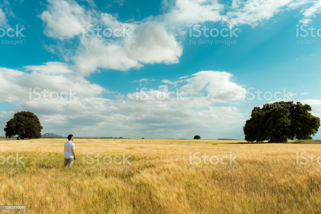 In the image can see a beautiful meadow in a central province from...