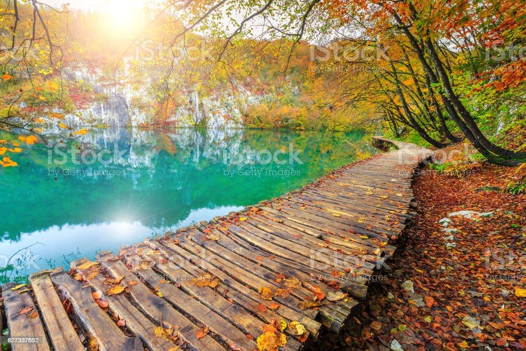 Fantastic tourist pathway in colorful autumn forest, Plitvice lakes, Croatia stock photo