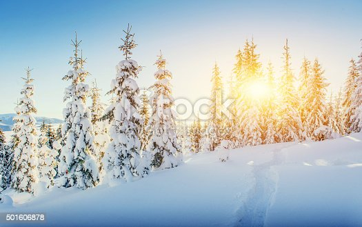 istock Fantastic winter landscape and worn trail leading into the mount 501606878