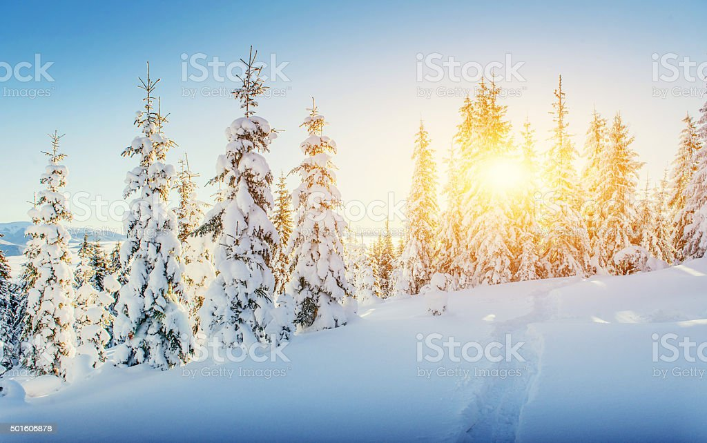 Fantastic winter landscape and worn trail leading into the mount stock photo