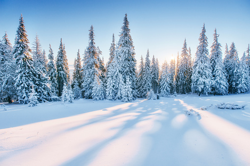 Fantastic Winter Landscape Magic Sunset In The Mountains A ...