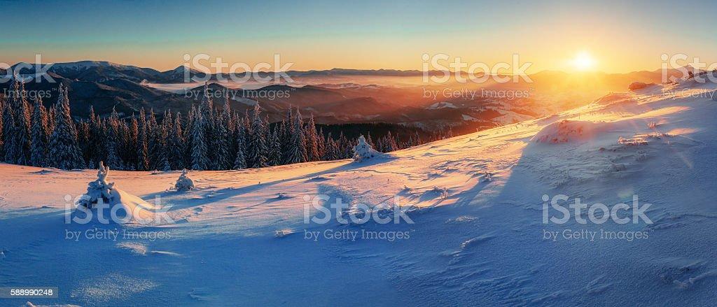 Fantastic winter landscape stock photo