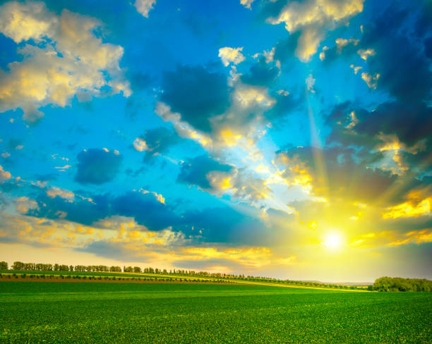Fantastically beautiful bright sky Fantastically beautiful bright sky over green farm field. beauty in nature stock pictures, royalty-free photos & images