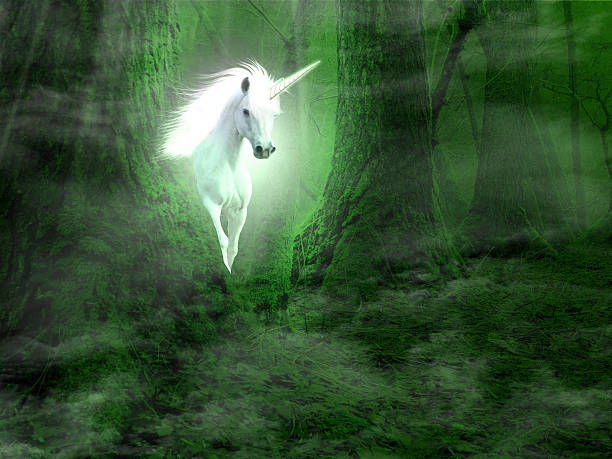 fantasy background with unicorn in the forest - unicorns stock photos and pictures