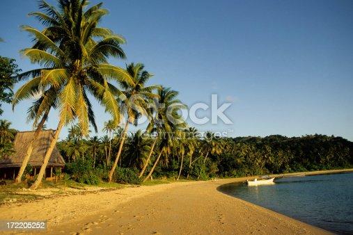Palms line Fijian beach.