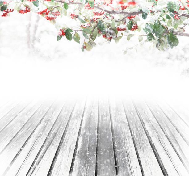 Fantasy christmas background picture id843942930?b=1&k=6&m=843942930&s=612x612&w=0&h=jo  oypghbyvym8lmj5oee6jnbh5dtbzmclt7cusvui=