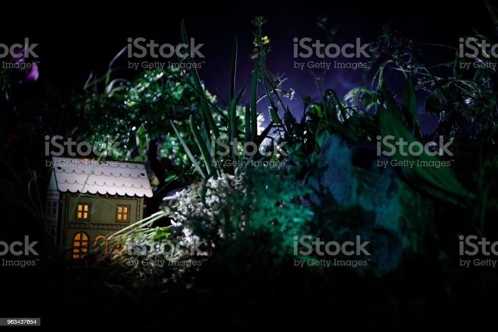 Photo de fantaisie décoré. Belle maisonnette en herbe avec la lumière. Vieille maison dans la forêt pendant la nuit avec la lune. Mise au point sélective - Photo de A l'abandon libre de droits