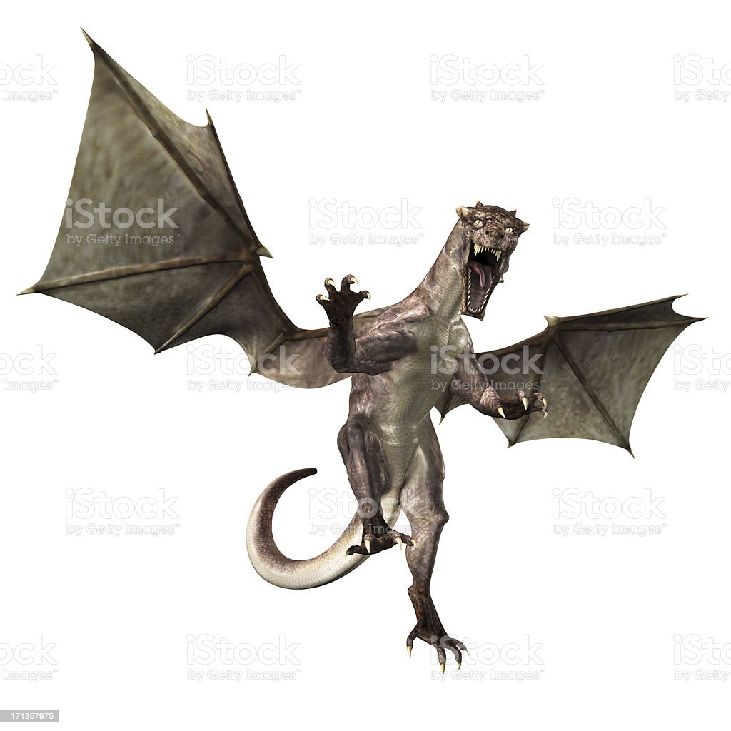 Fantasy Dragon XXXL stock photo