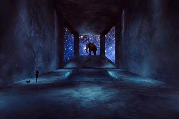 fantasie elefant fuß in raumschiff - elefanten umriss stock-fotos und bilder