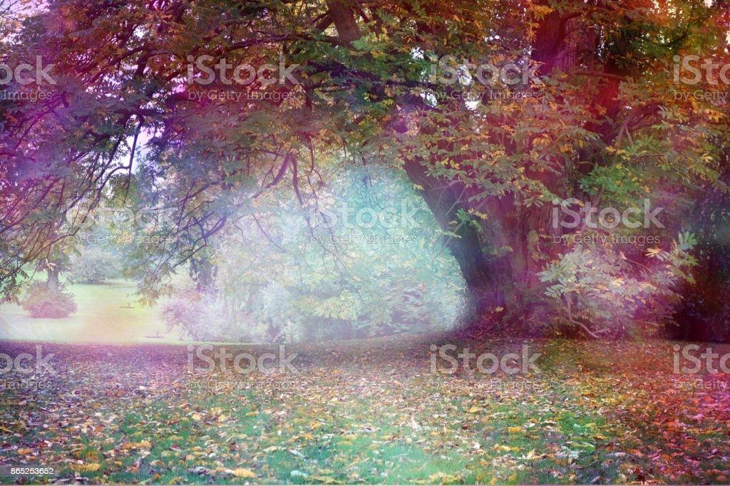 Fantasy Faerie Tree Landscape stock photo