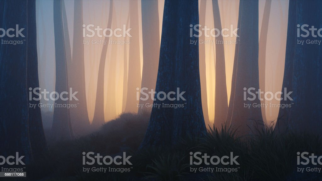 Floresta de fantasia com luz misteriosa - foto de acervo