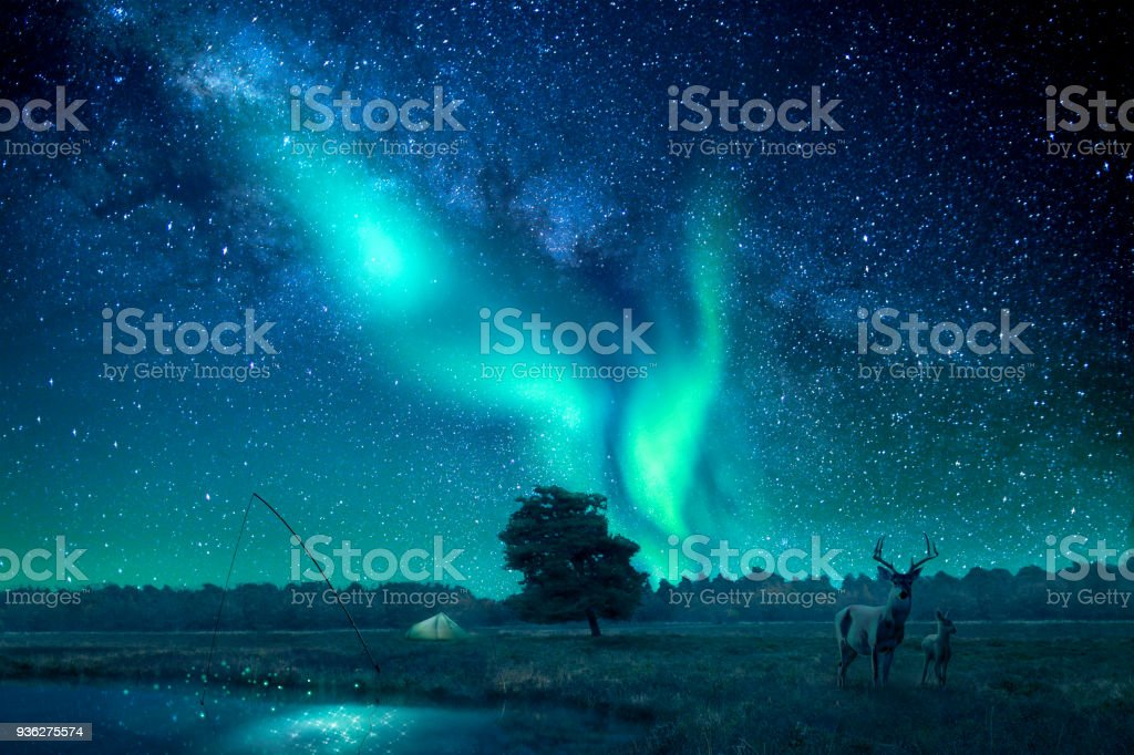 A fantasy landscape lit by northern lights/aurora borealis stock photo