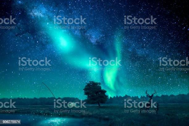Photo of A fantasy landscape lit by northern lights/aurora borealis