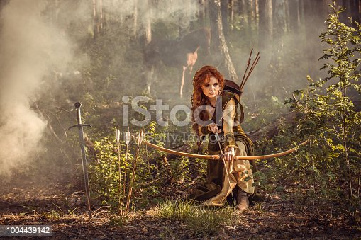 istock Fantasy medieval woman hunting in mystery forest 1004439142