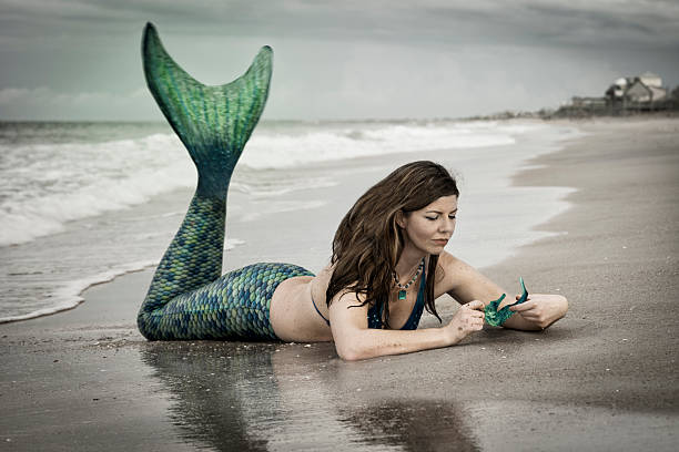 fantasy mermaid with sea horse - tail stock photos and pictures