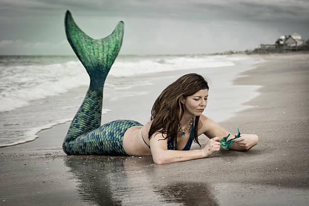 Fantasy mermaid with sea horse stock photo