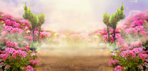 Fantasy summer wide photo background with roses field trees and foggy picture id1160774888?b=1&k=6&m=1160774888&s=612x612&w=0&h=frtdwopsnv2v5xoqtng8ghygu7lcuxbxlr fkgh buw=