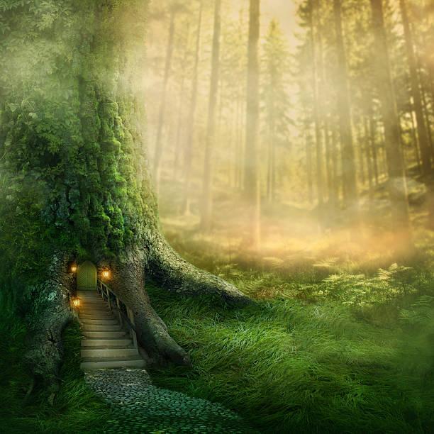 fantasy tree house - fee stock-fotos und bilder