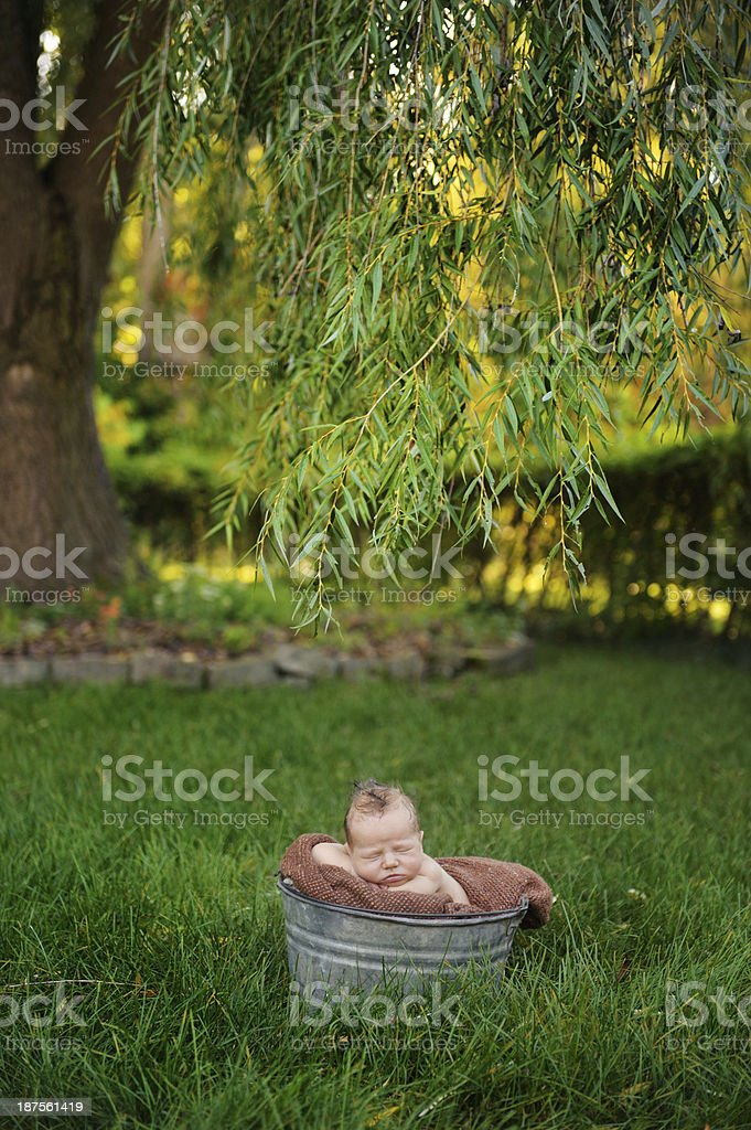 Far Shot Of Newborn Posing Outside royalty-free stock photo