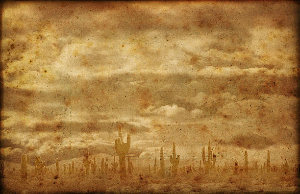 far west badlands grunge background - wild west stock photos and pictures