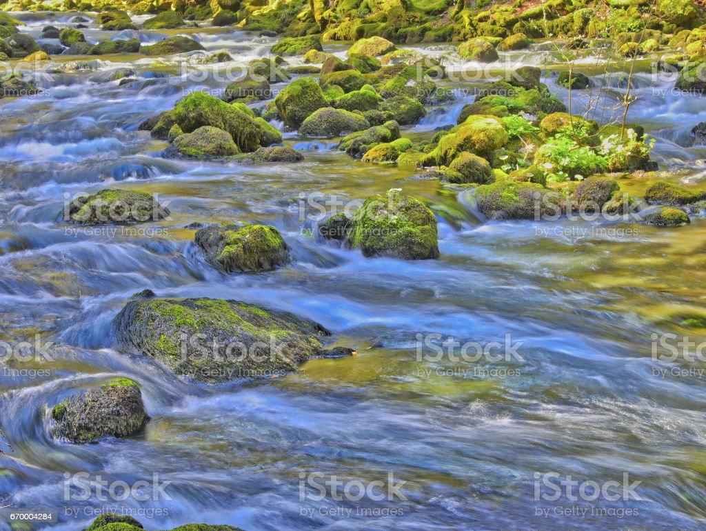 Farbenfroher Flusslauf im Frühling stock photo