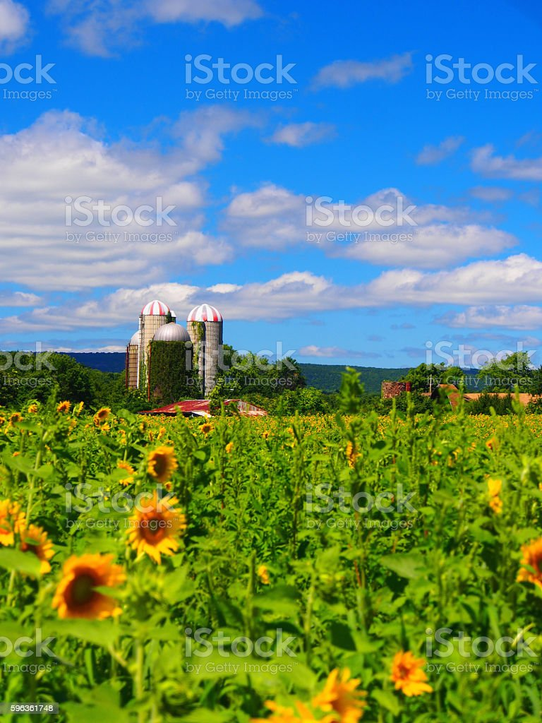 Farm and Barn royalty-free stock photo