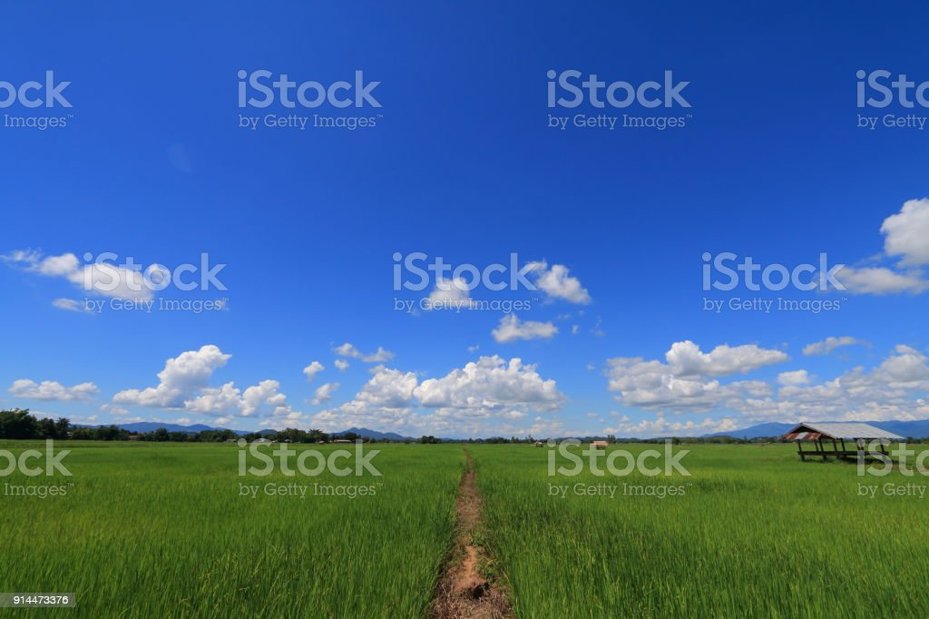farm and cloud stock photo