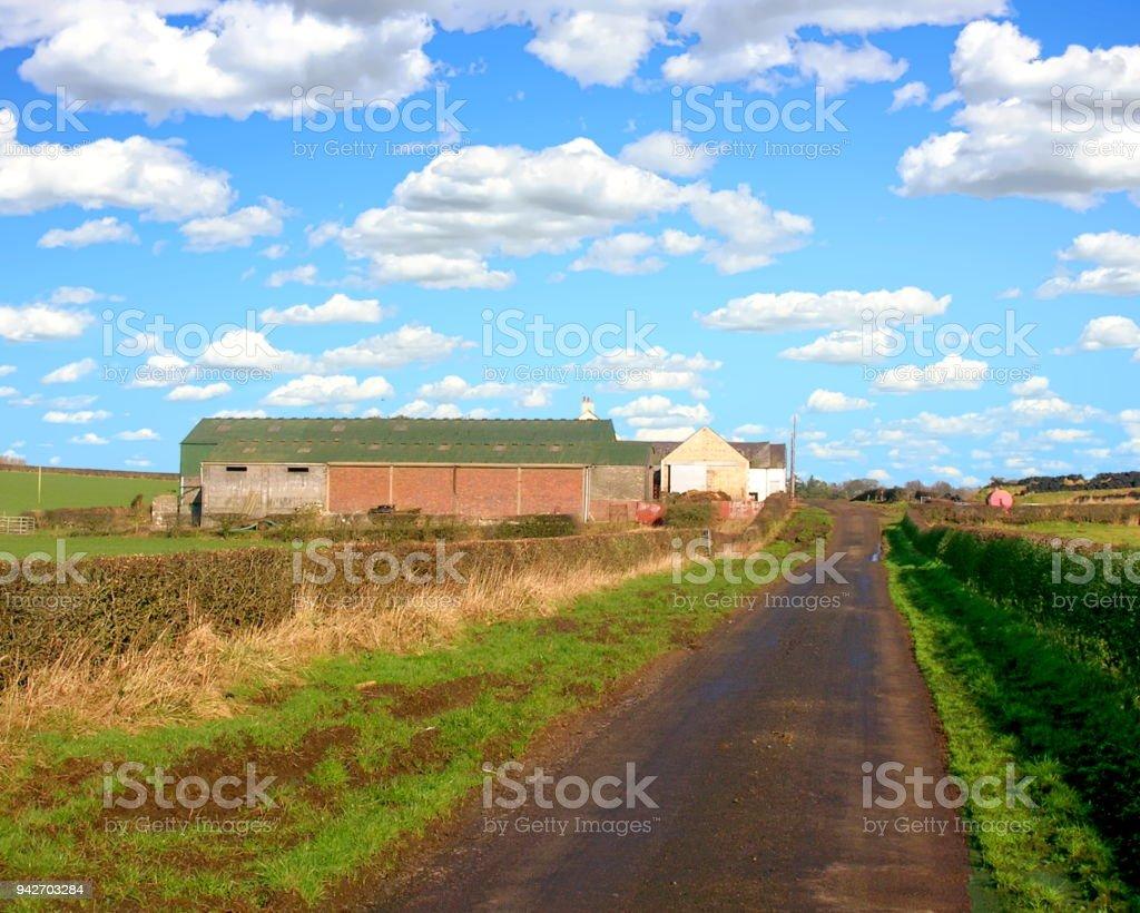 Farm et Meadow - Photo