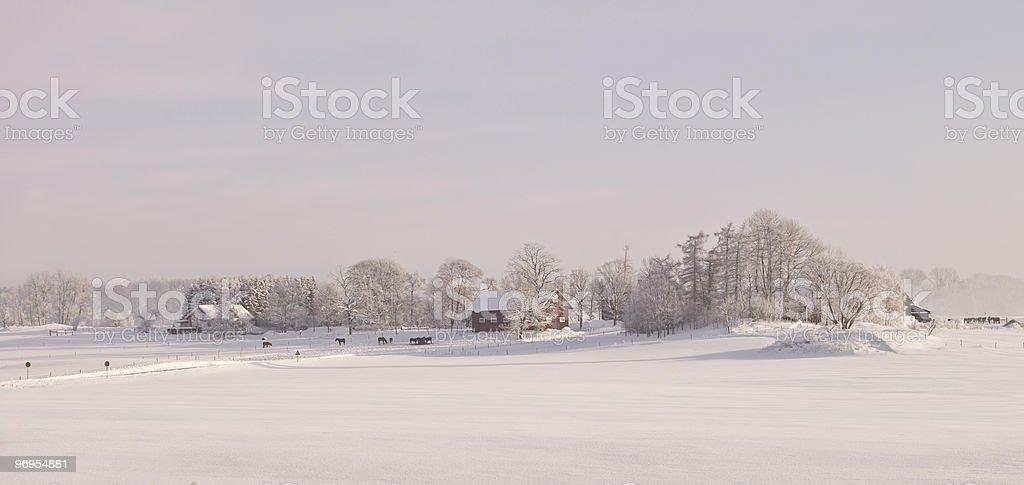 Farm at winter landscape royalty-free stock photo