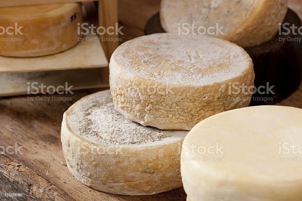 Farm cheese stock photo