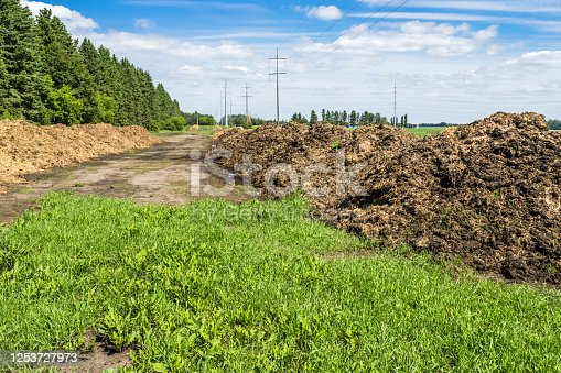 Manure farm composting in windrows