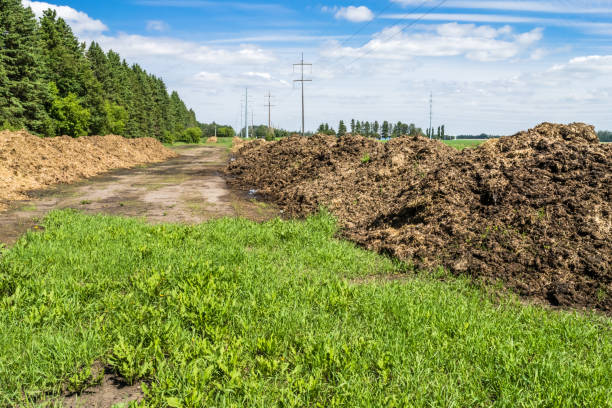 Farm composting in windrows stock photo