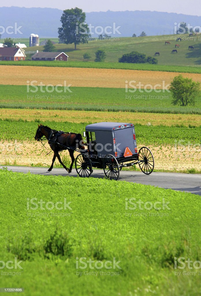 Farm Country stock photo
