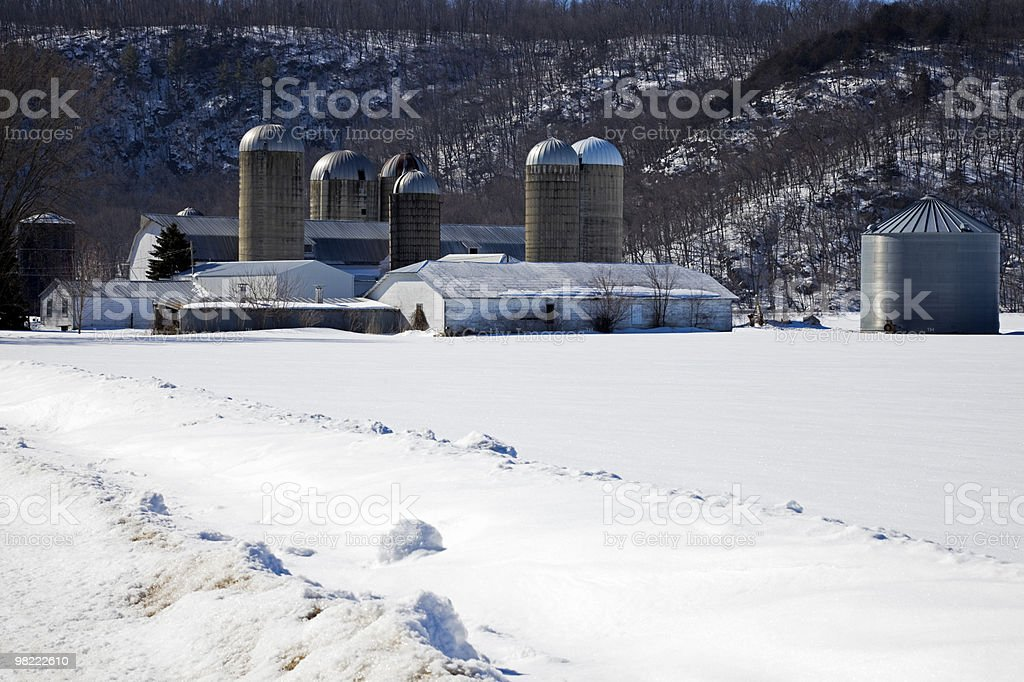 Farm during winter royalty-free stock photo