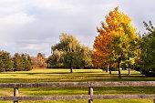 istock Farm Fence in Fall 502996154