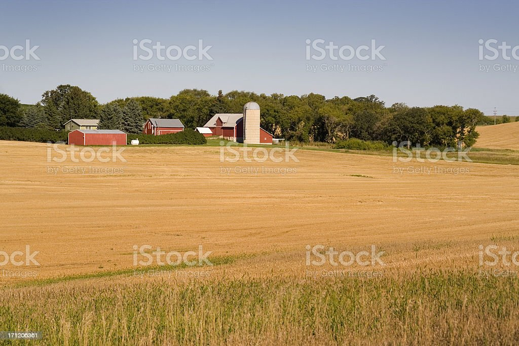 Farm Field and Barns, Minnesota, Rural Midwest, USA Agricultural Landscape royalty-free stock photo