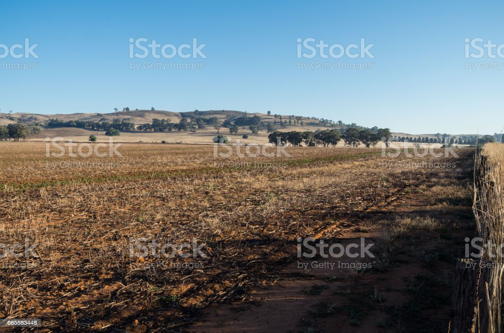 Farm field in Dookie, in the Goulburn Valley, Australia 免版稅 stock photo
