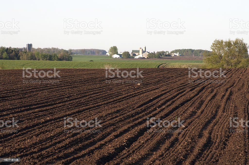 Farm Field in Spring royalty-free stock photo