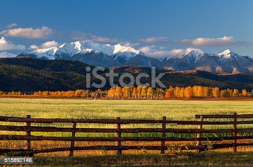 istock Farm field of cereals with fence 515892146