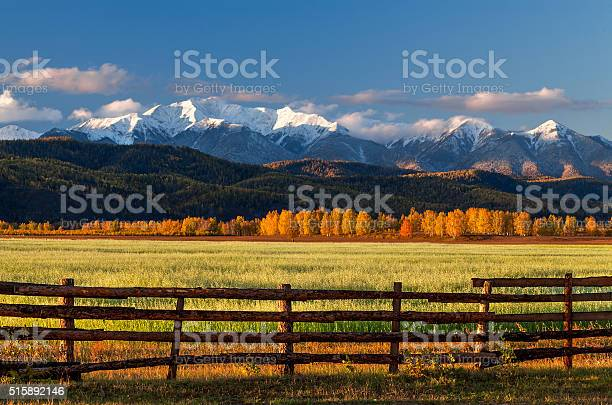 Farm field of cereals with fence picture id515892146?b=1&k=6&m=515892146&s=612x612&h=cvnczsdlwf9inopw700woxc 6jmdlyso6yrcagvfv20=