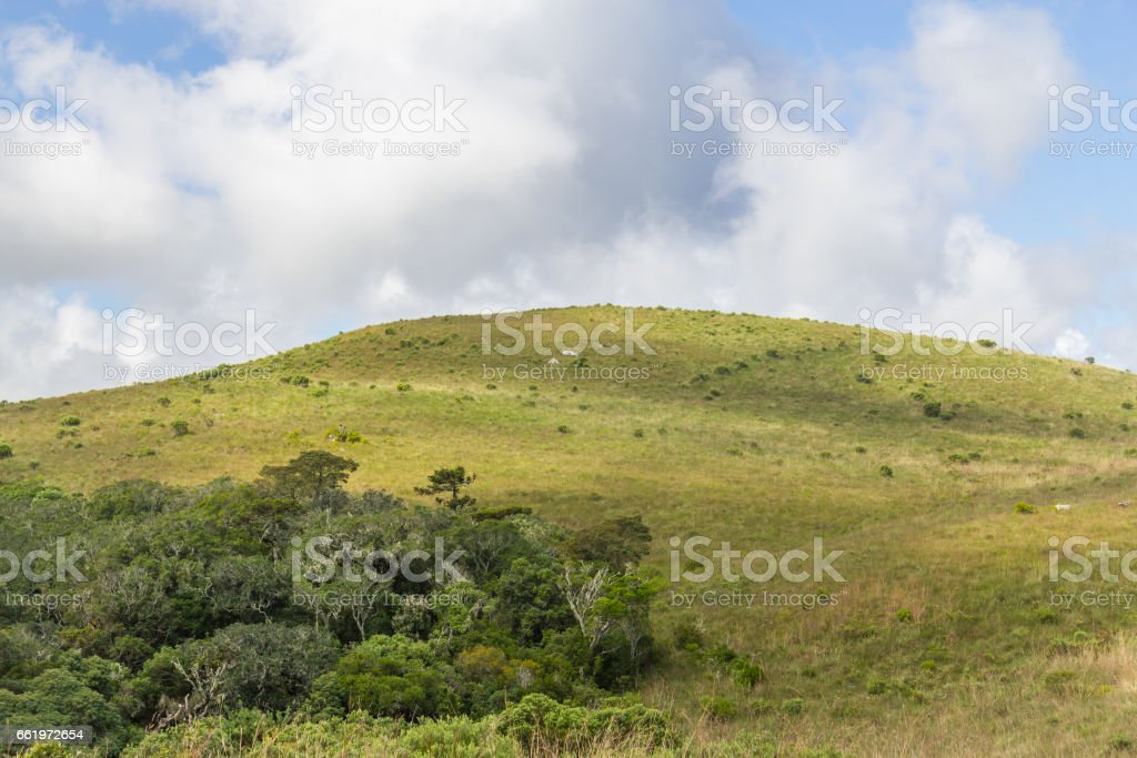 Farm field with forest and clouds royalty-free stock photo