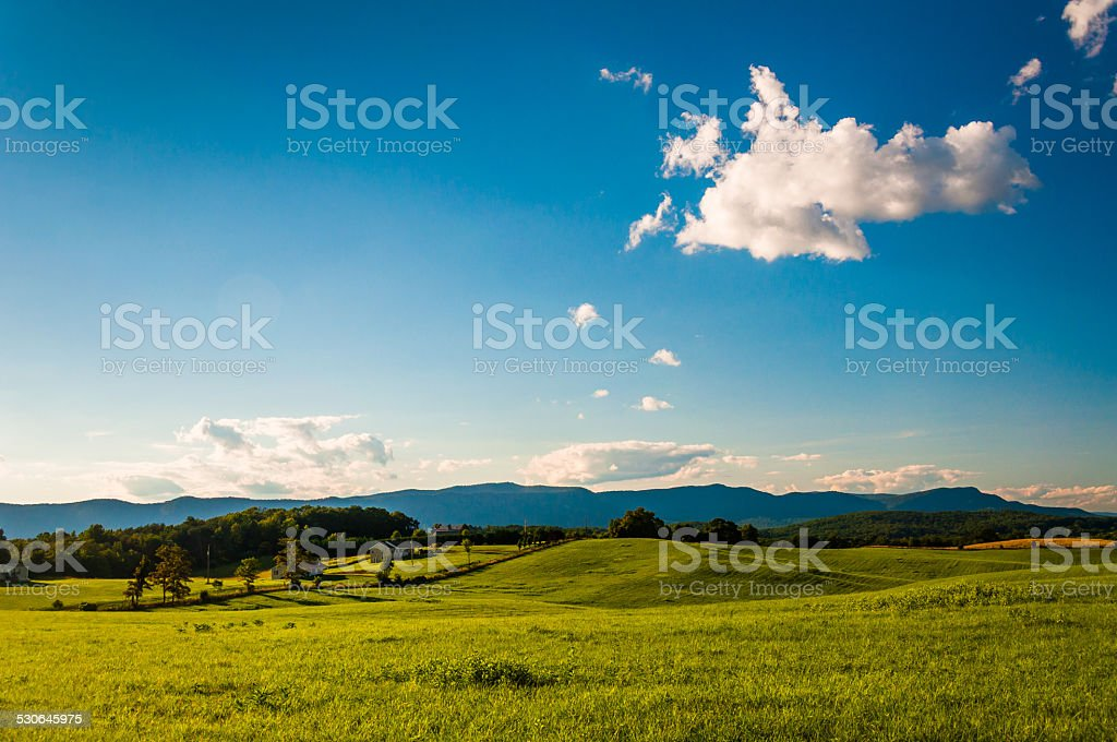 Farm fields and view of Massanutten Mountain, in the Shenandoah stock photo