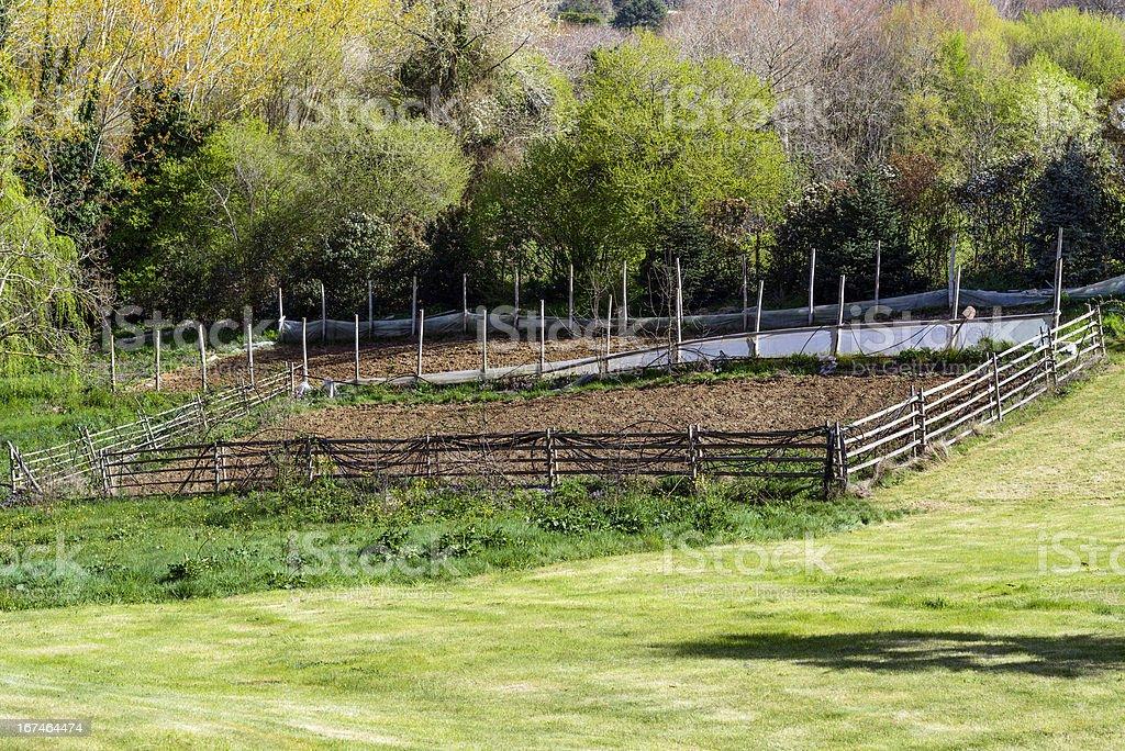 Farm Fields royalty-free stock photo