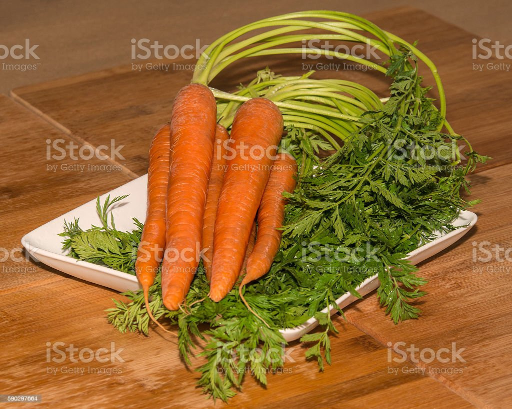 Farm Fresh Carrots royaltyfri bildbanksbilder