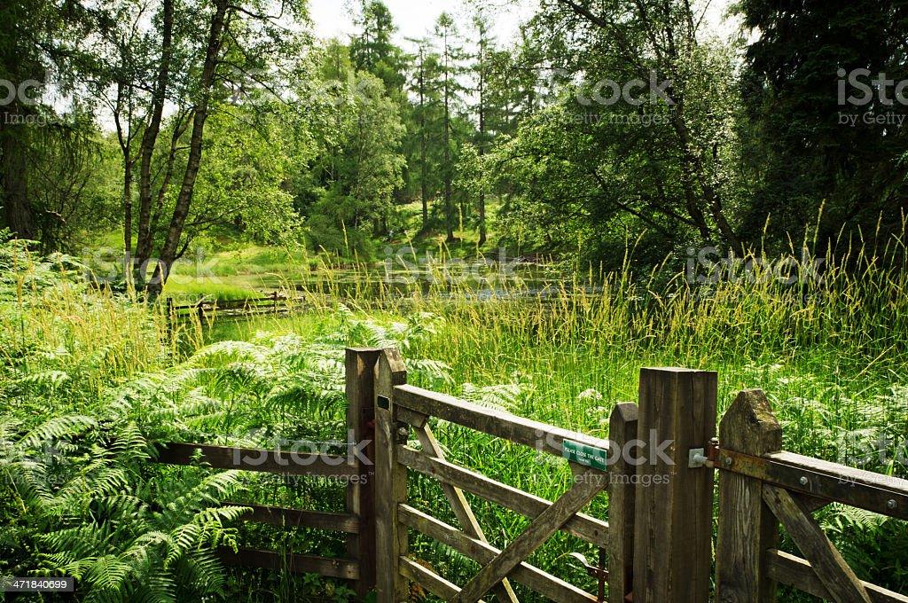 Farm Gate Cumbria royalty-free stock photo