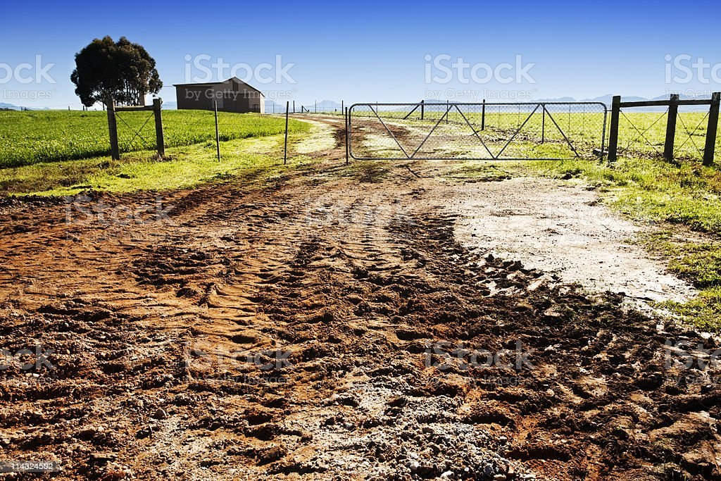 Farm gate with muddy dirt road stock photo