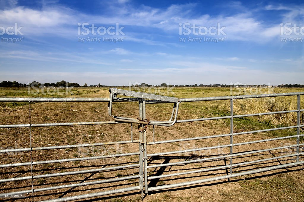 Farm Gates And Norfolk Marshlands Stock Photo & More