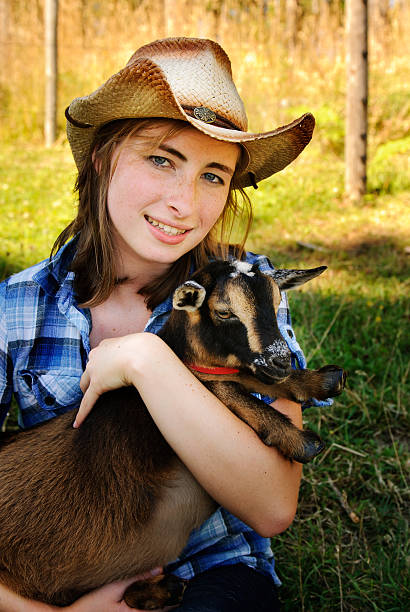 Farm Girl and Goat stock photo