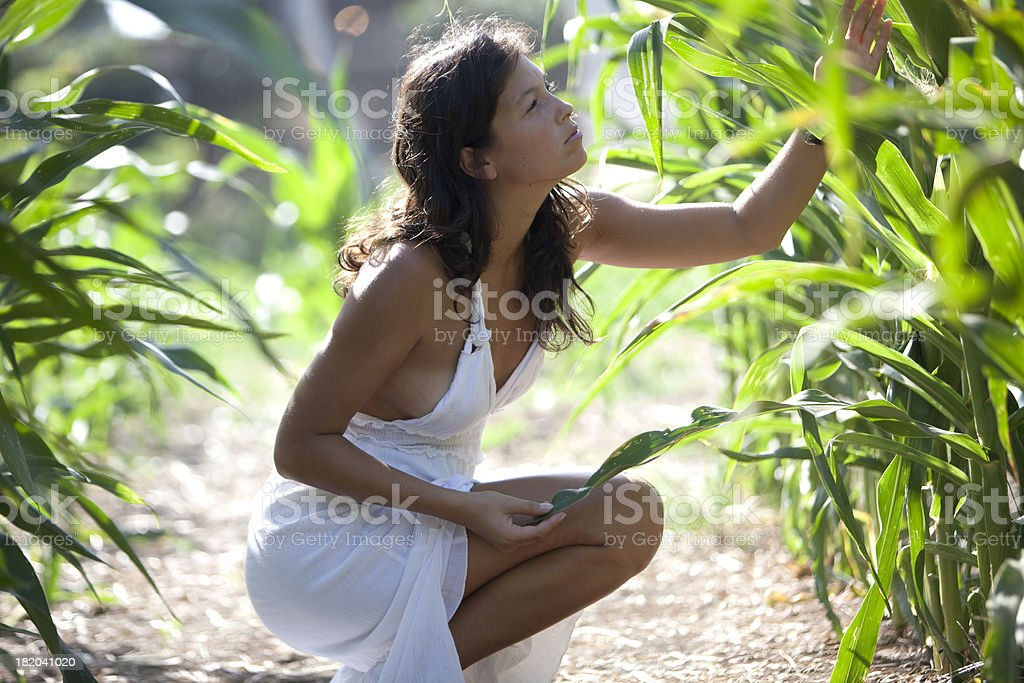 Farm girl inspecting crops royalty-free stock photo