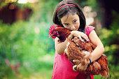 Little girl is holding her beloved hen.